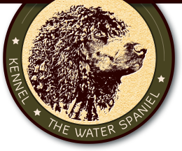 Logo of Kennel - The Water Spaniel